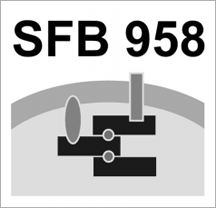 SFB 958: Scaffolding of Membranes - Molecular Mechanisms and Cellular Functions